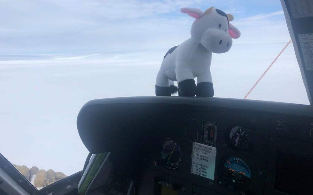 MCAS Antarctic Experience